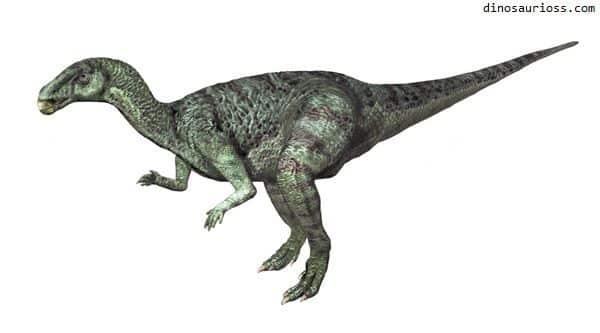 Camptosaurus - Lagarto flexible