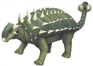 Euplocephalus