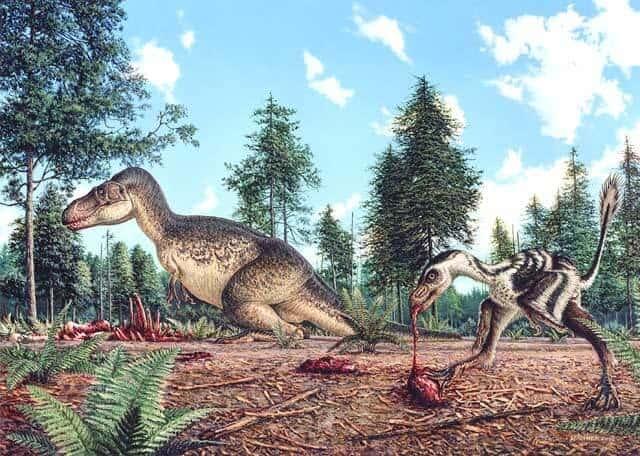 habitat-gorgosaurus