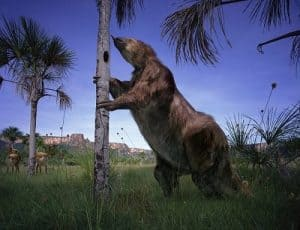 Megatherium o perezoso gigante