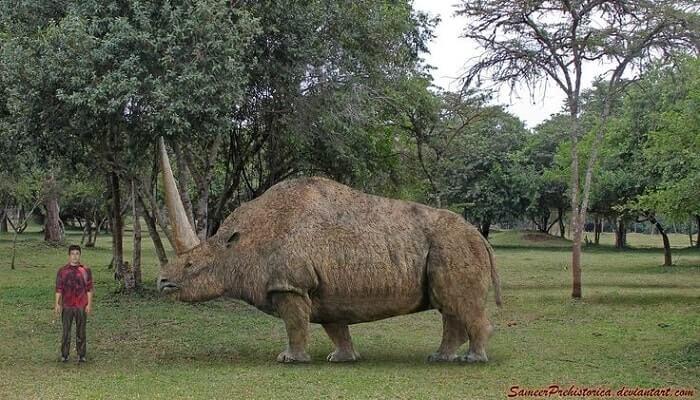 Hábitat del Elasmotherium