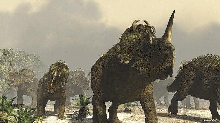 Historia del Centrosaurus