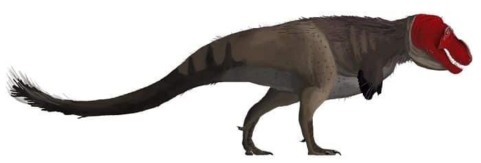padre-del-tyrannosaurus-rex