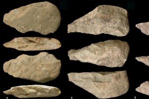 herramientas homo erectus