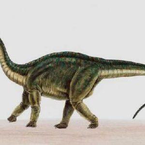 Riojasaurus – dinosaurio omnivoro