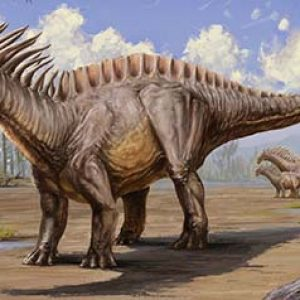 amargasaurus – dinosaurio herbivoro