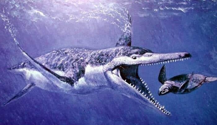 Dieta del Kronosaurus