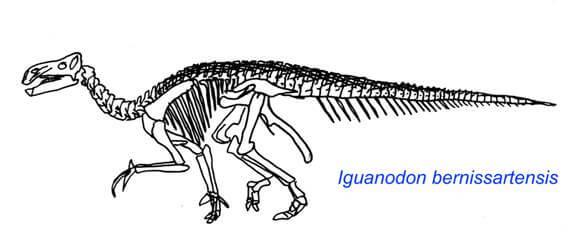 Descripción del Iguanodon