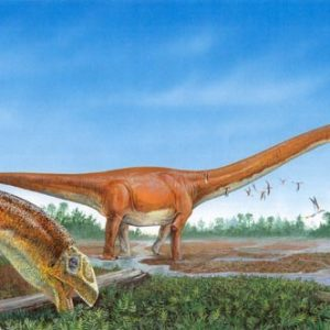 Mamenchisaurus – dinosaurio herbivoro