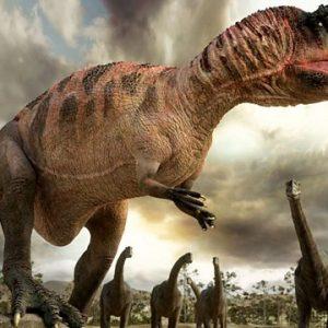 carcharodontosaurus – dinosaurio carnívoro